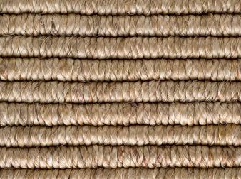 Rabi Wheat Abaca