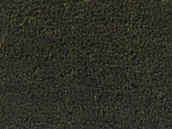 Forest Green Door Mat